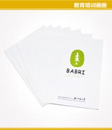 老年脑健康研究中心北京师范大学画册印刷