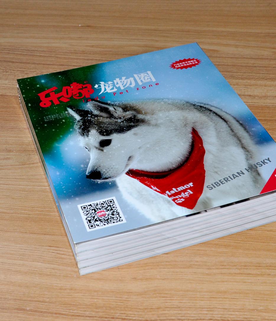 乐嘟宠物园宣传画册印刷
